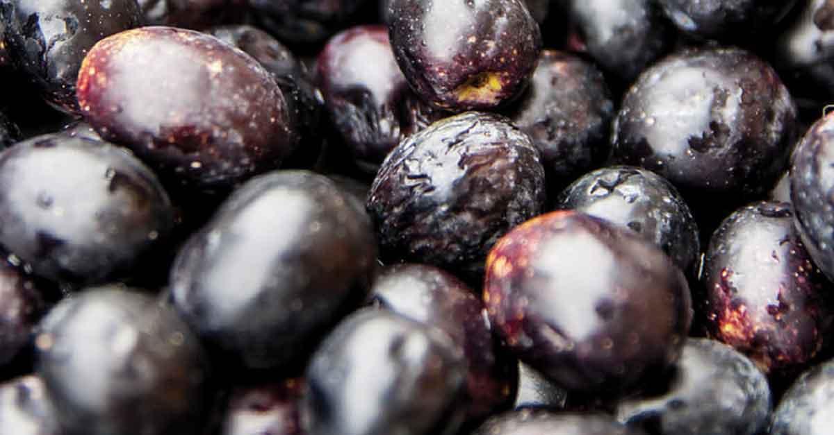 Olive nere di Castelvetrano